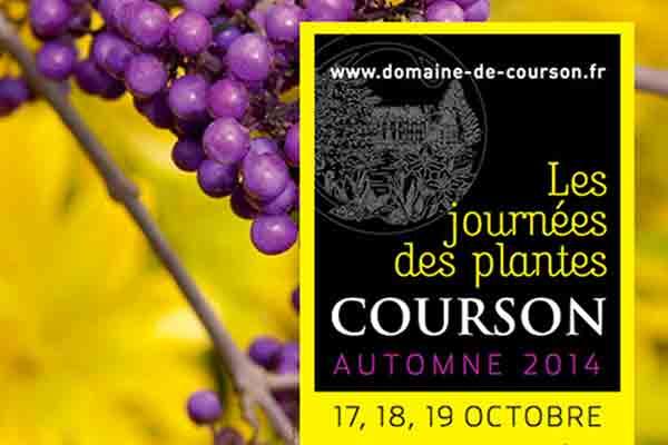 JOURNEE-DES-PLANTES DE-COURSON-OCTOBRE-2014_LES-BOOMEUSES