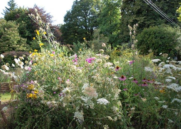 10 invitations pour les journ es des plantes de chantillyles boomeuses - Journee des plantes chantilly ...