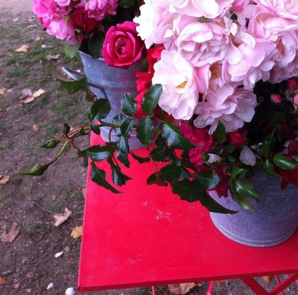 10 invitations pour les journ es des plantes de chantilly. Black Bedroom Furniture Sets. Home Design Ideas