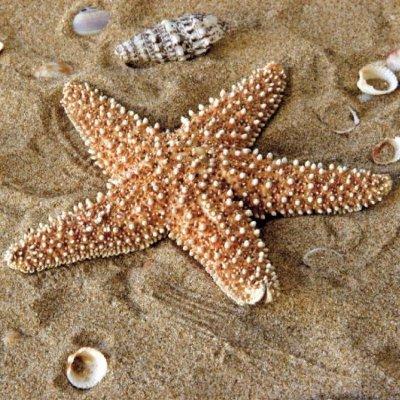eviter les soucis gynécologiques la mer-les boomeuses-femmes_50 ans