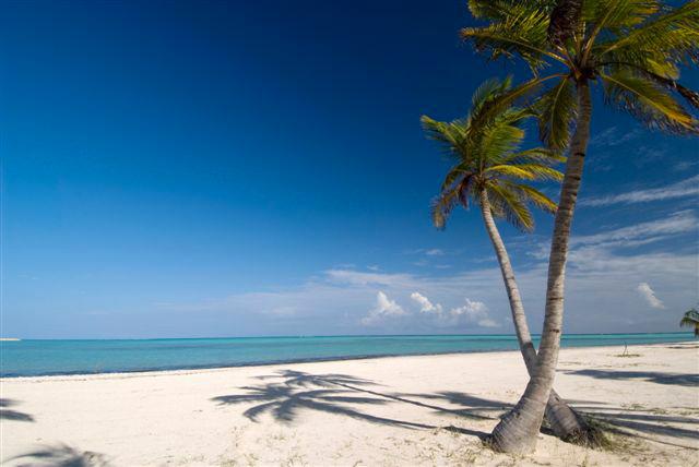 Republique Dominicaine Punta Cana-Les Boomeuses