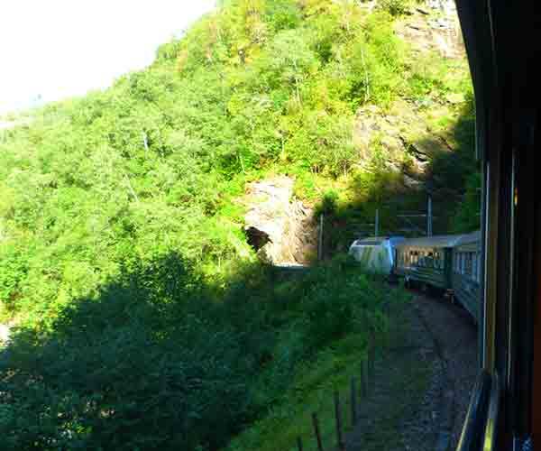 Le-train-de-Flam-à-Voss