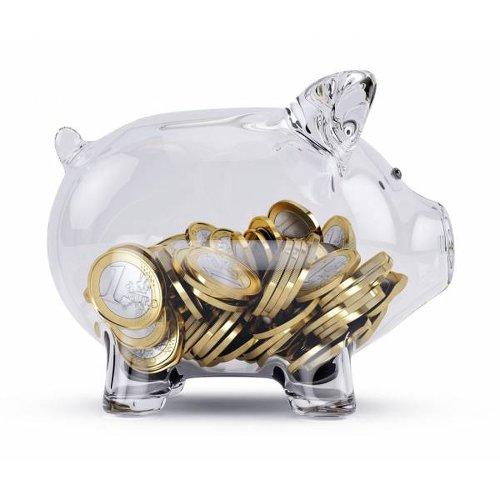 tirelire cochon transparente avec des pièces d'euros à l'intérieur