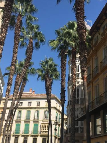 Rang de palmiers sur une place bordée d'immeubles à Malaga, publiée dans le magazine Les boomeuses