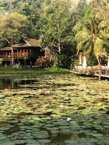paysage en thailande du nord