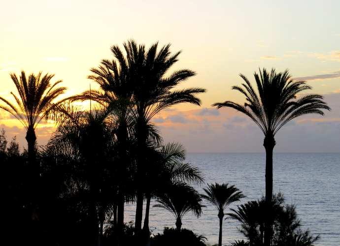 plage au lever du jour en Espagne