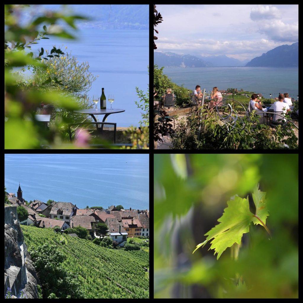 Evasion Suisse vignoble lavaux